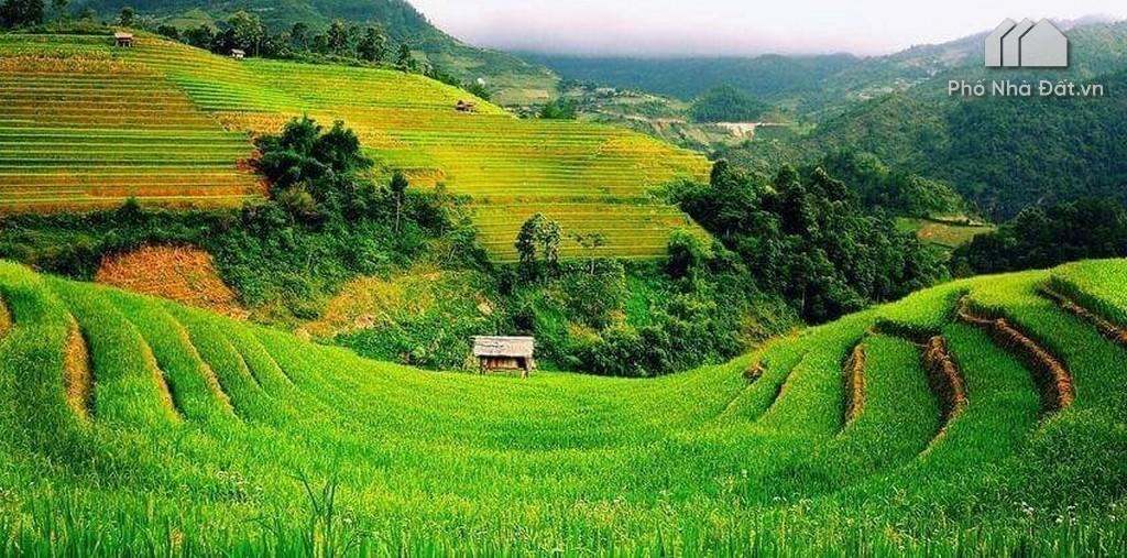 Đất phi nông nghiệp là gì? Đất phi nông nghiệp có được chuyển nhượng KO?